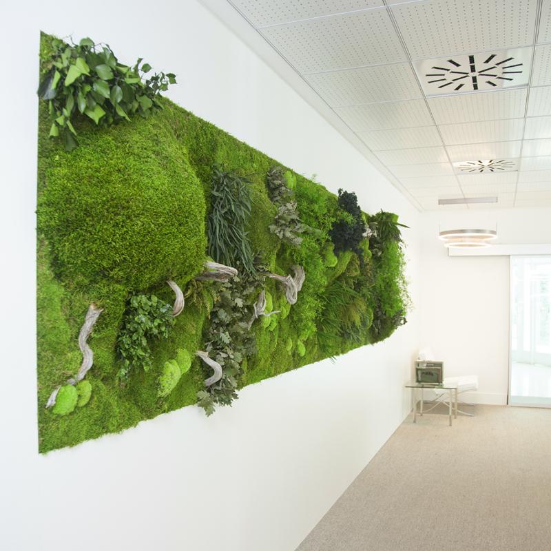 Wandverkleidung aus Moos und Pflanzen